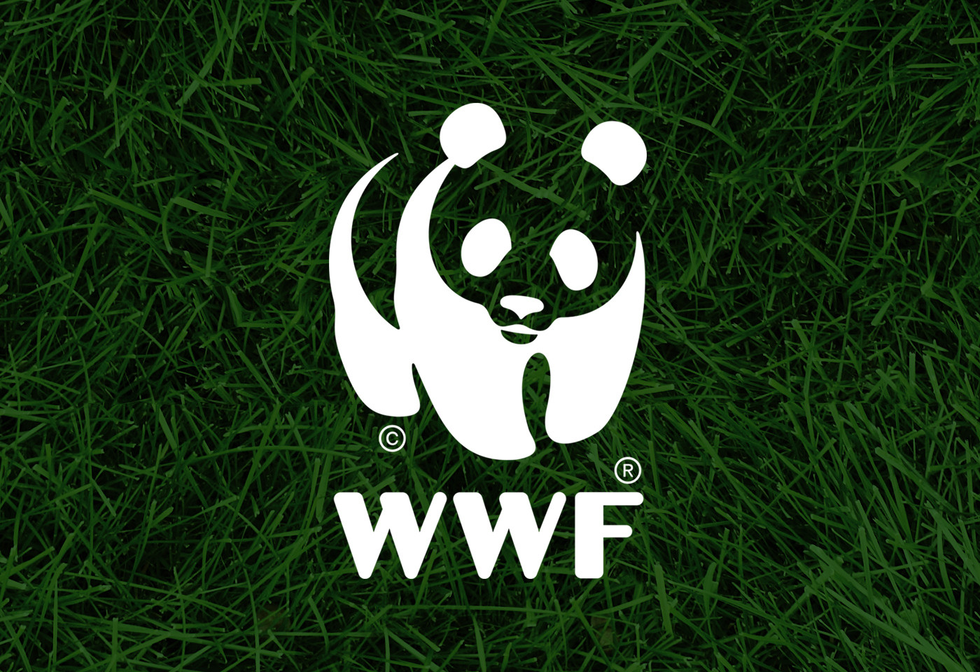 WWF Scotland